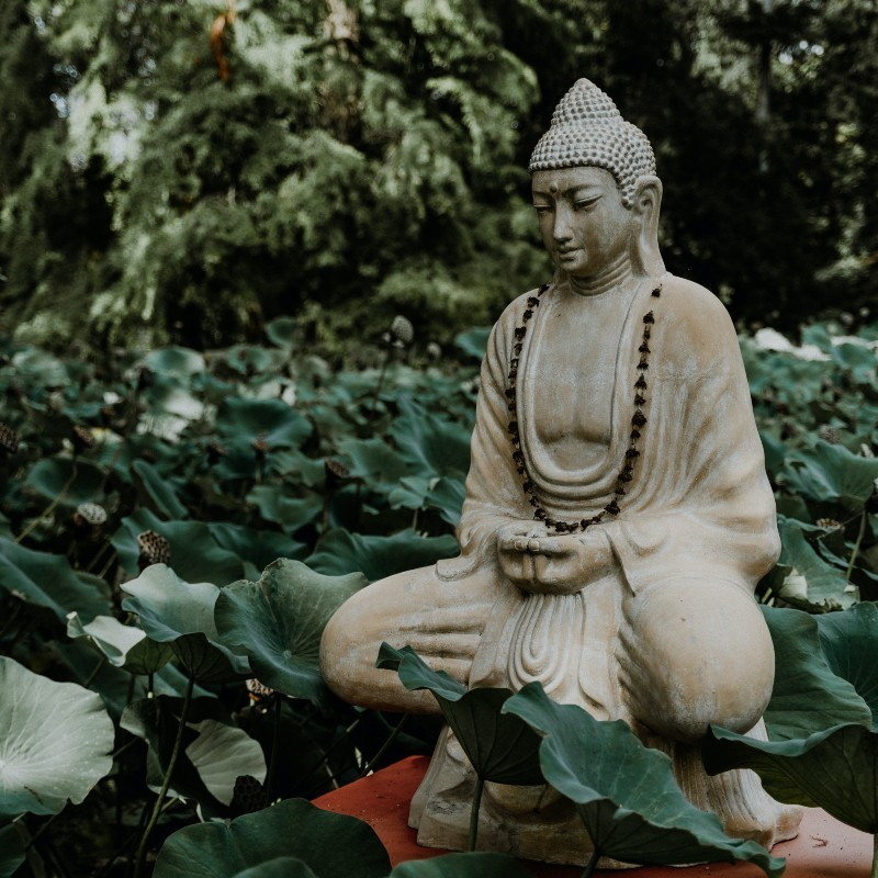 Βουδισμός: Τι σχέση έχει με την ευαισθητοποίηση των παιδιών της Ταϊβάν για το περιβάλλον;