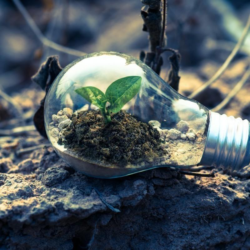 H Παγκόσμια Τράπεζα ξεκινά «σχέδιο δράσης» για την προστασία του πλανήτη